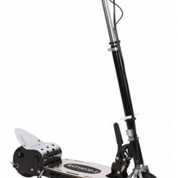 Электросамокат E-SCOOTER E4 BIG