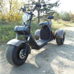 Купить Electrodrive Citycoco Tricycle SMD 3-1