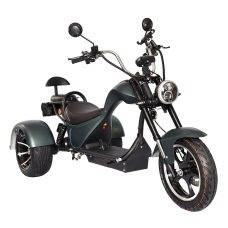 Купить SKYBOARD TRIKE CHOPPER