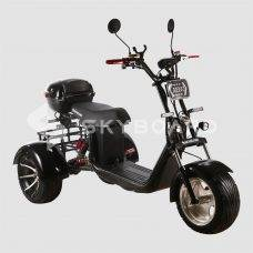 Skyboard Trike BR60-3000